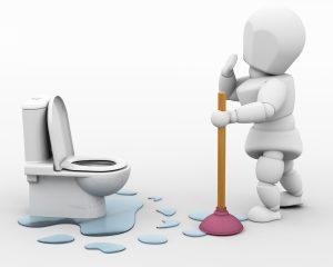 Indianapolis Toilet Plumber 317-784-1870